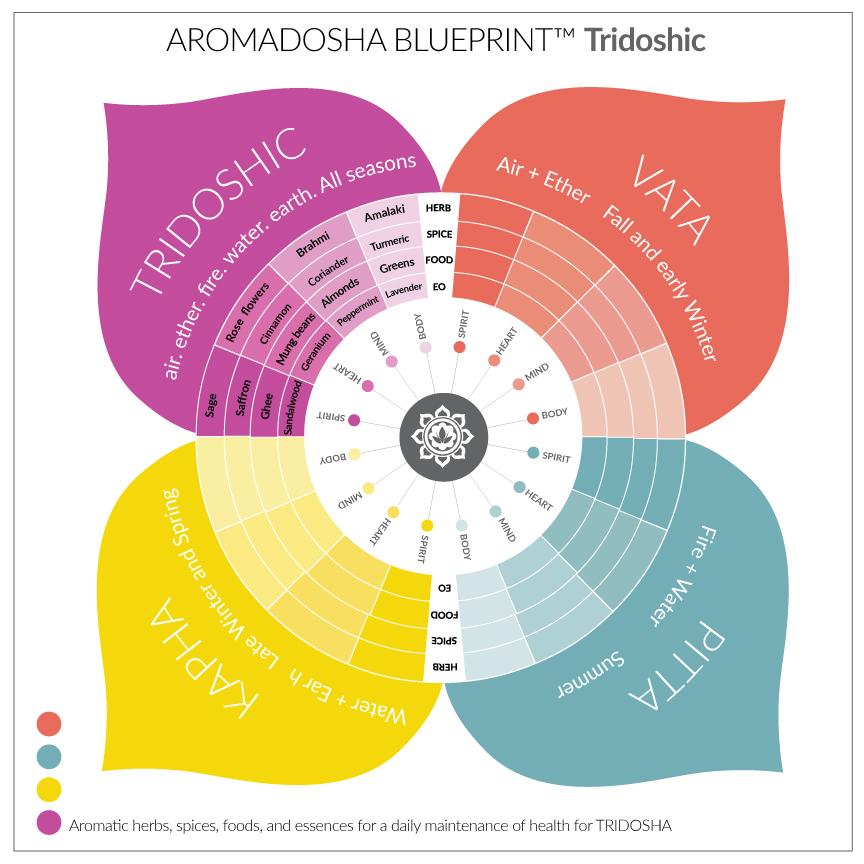 AROMADOSHA BLUEPRINT-TRI