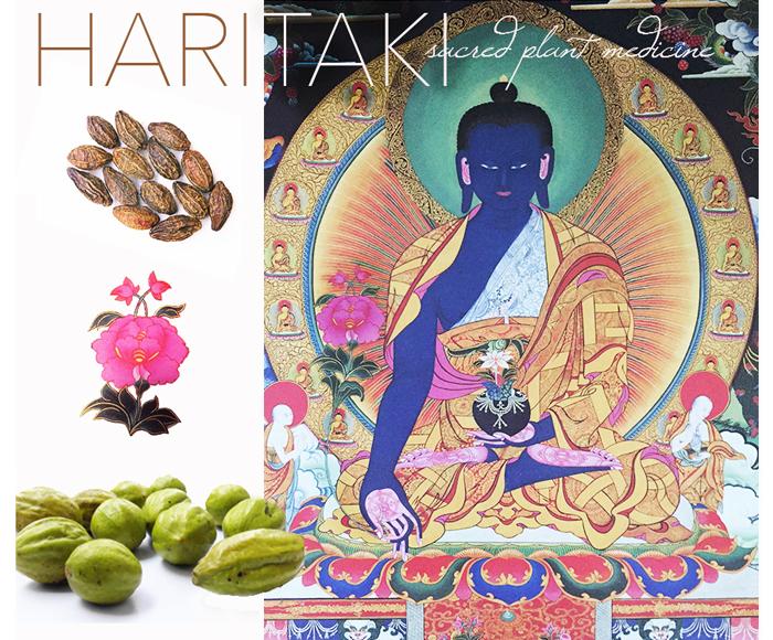 Medicine Buddha and the Three Poisons