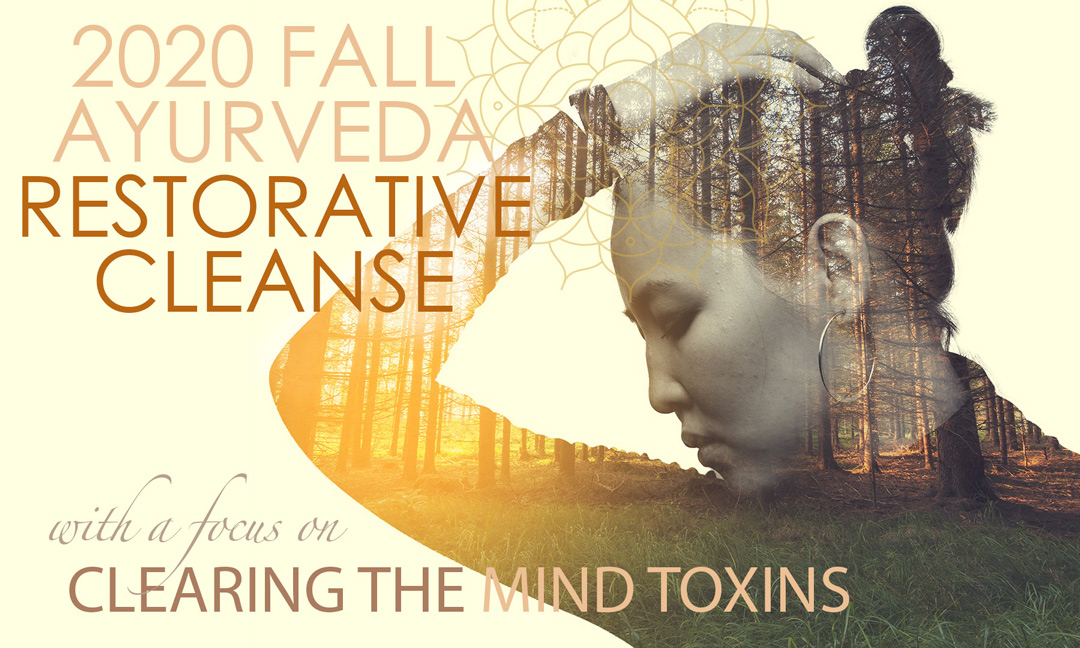 Fall Cleanse Mind Detox