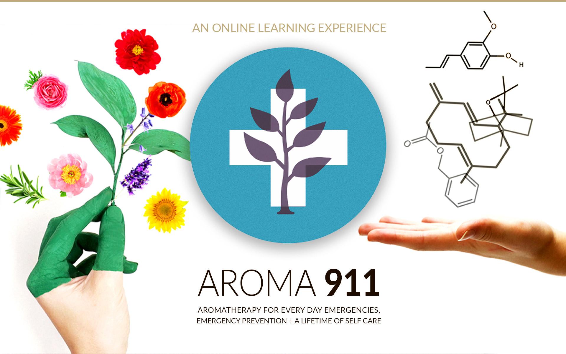 Aroma 911 Ayurvedic Wellness Course