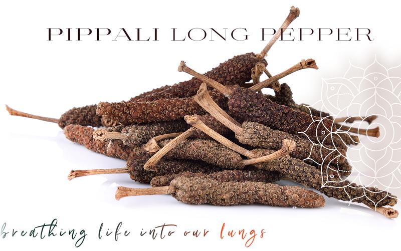 Long Pepper. Long Life.