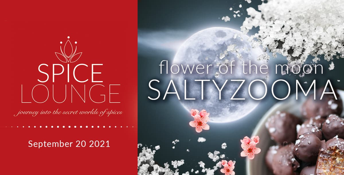 Spice Lounge SaltyZooma